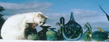cat with Mdina glass